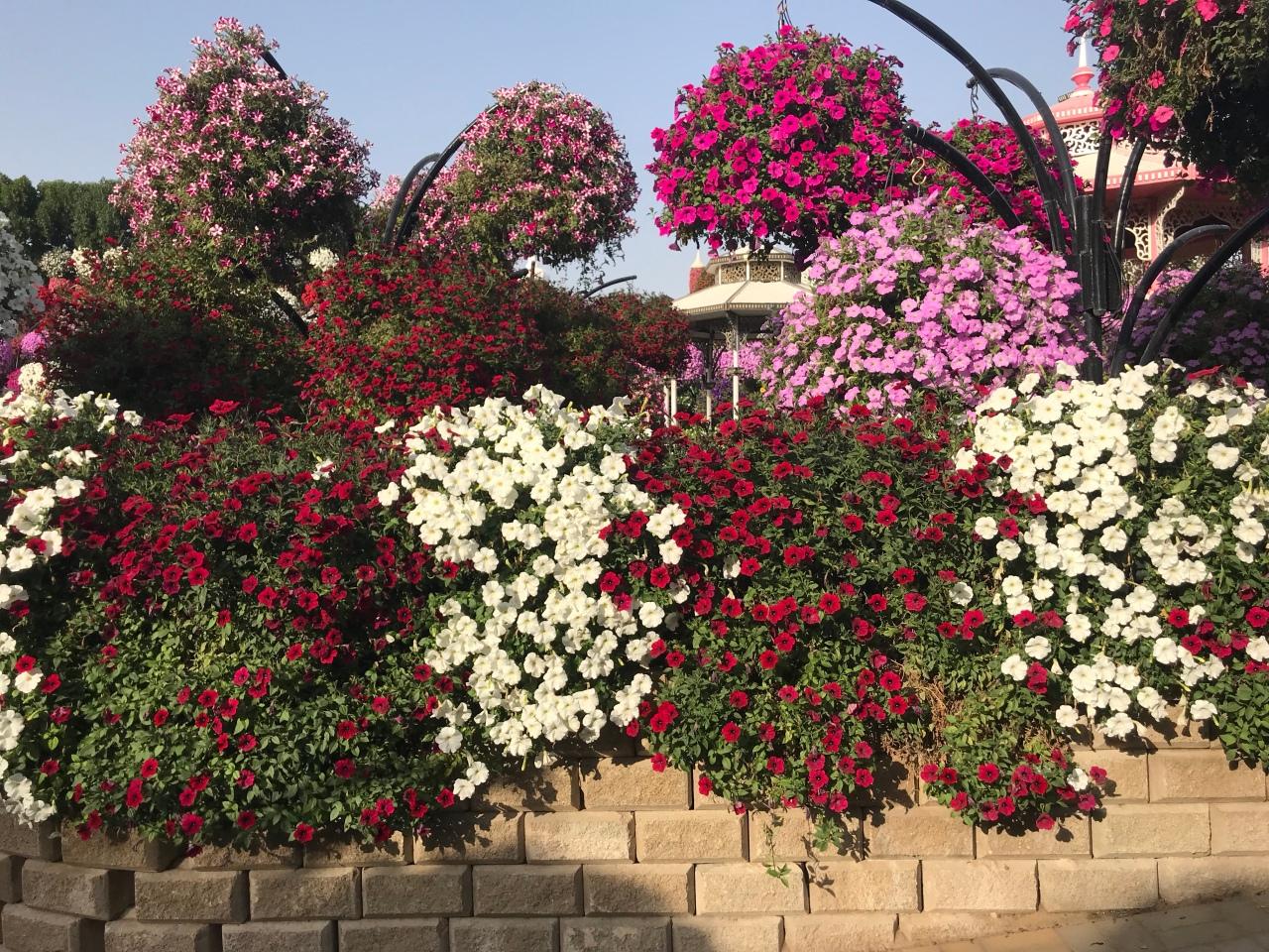 Dubai Miracle Garden – Jöūrnêy wïth JČ